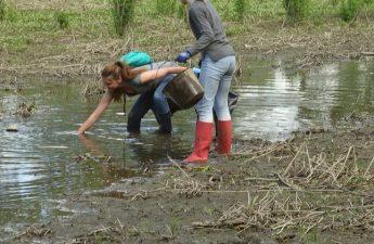 ramassage des déchets au plan d'eau du Layon le 11 mai 2019